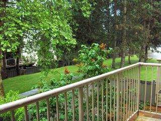 Photo 6: 75 2905 Norman Avenue in Coquitlam: Home for sale
