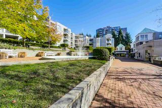 """Photo 17: 101 8430 JELLICOE Street in Vancouver: Fraserview VE Condo for sale in """"THE BOARDWALK"""" (Vancouver East)  : MLS®# R2005014"""