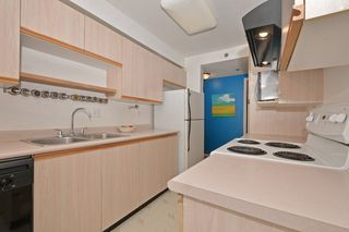 Photo 15: 110 545 Manchester Rd in VICTORIA: Vi Burnside Condo Apartment for sale (Victoria)  : MLS®# 739420