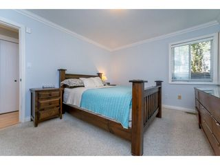 Photo 14: 9488 213 Street in Langley: Walnut Grove House for sale : MLS®# R2169405