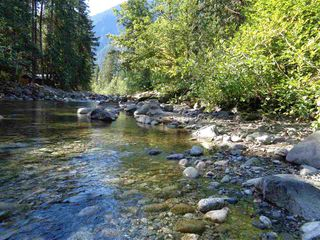Photo 4: 19903 SILVER SKAGIT Road in Hope: Hope Silver Creek Land for sale : MLS®# R2231721