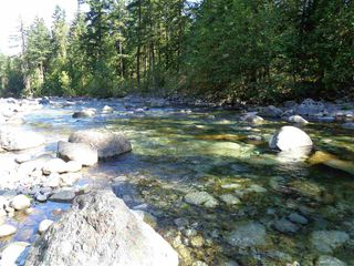 Photo 5: 19903 SILVER SKAGIT Road in Hope: Hope Silver Creek Land for sale : MLS®# R2231721
