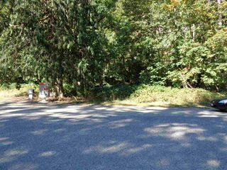 Photo 7: 19903 SILVER SKAGIT Road in Hope: Hope Silver Creek Land for sale : MLS®# R2231721