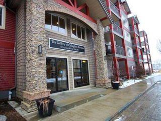 Main Photo: 302 1619 JAMES MOWATT Trail in Edmonton: Zone 55 Condo for sale : MLS®# E4130491