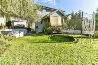 Photo 19: 11145 236 Street in Maple Ridge: Cottonwood MR House for sale : MLS®# R2314822
