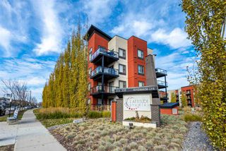 Main Photo: 204 304 AMBLESIDE Link in Edmonton: Zone 56 Condo for sale : MLS®# E4133272