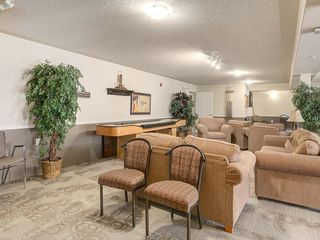Photo 27: 420 5000 SOMERVALE Court SW in Calgary: Somerset Apartment for sale : MLS®# C4221237