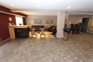 Photo 19: 413 279 SUDER GREENS Drive in Edmonton: Zone 58 Condo for sale : MLS®# E4140829