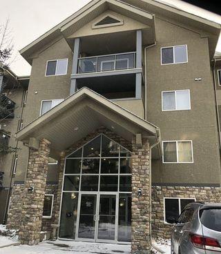 Photo 2: 413 279 SUDER GREENS Drive in Edmonton: Zone 58 Condo for sale : MLS®# E4140829