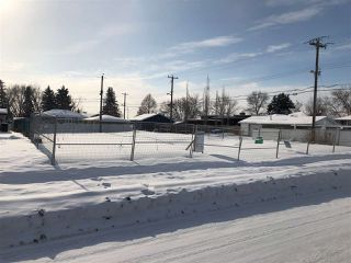 Photo 5: 3645 106 Avenue in Edmonton: Zone 23 Vacant Lot for sale : MLS®# E4141230