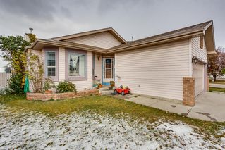 Photo 1: 232 Applewood Drive SE in Calgary: Applewood Park Detached for sale : MLS®# A1044158