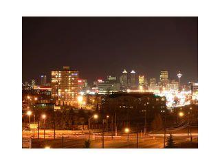 Photo 11: 1011 8710 HORTON Road SW in CALGARY: Haysboro Condo for sale (Calgary)  : MLS®# C3502812
