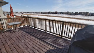 Photo 14: 87 John Mann Place in Winnipeg: North Kildonan Residential for sale (North East Winnipeg)  : MLS®# 1203969