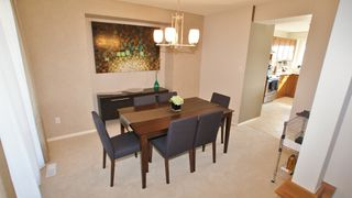 Photo 11: 87 John Mann Place in Winnipeg: North Kildonan Residential for sale (North East Winnipeg)  : MLS®# 1203969