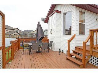 Photo 16: 34 NEW BRIGHTON Circle SE in CALGARY: New Brighton Residential Detached Single Family for sale (Calgary)  : MLS®# C3615975