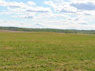 Photo 7: : Rural Mountain View County Land for sale : MLS®# C3641080