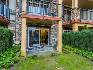 """Photo 14: 109 8328 207A Street in Langley: Willoughby Heights Condo for sale in """"YORKSON CREEK"""" : MLS®# R2023319"""