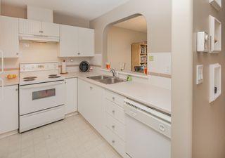 """Photo 6: 104 12639 NO. 2 Road in Richmond: Steveston South Condo for sale in """"NAUTICA SOUTH"""" : MLS®# R2166284"""