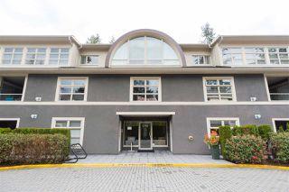 Photo 20: 101 3750 EDGEMONT BOULEVARD in North Vancouver: Edgemont Condo for sale : MLS®# R2160929