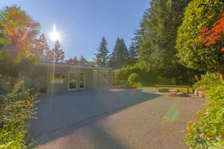 Photo 16: 3841 BAYRIDGE Avenue in West Vancouver: Bayridge House for sale : MLS®# R2232684