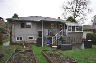 Photo 14: 1288 Tattersall Dr in VICTORIA: SE Cedar Hill Single Family Detached for sale (Saanich East)  : MLS®# 778179