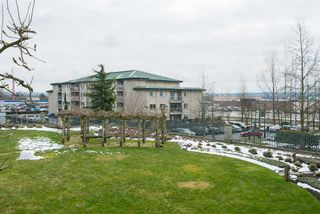 "Photo 1: 212 6336 197 Street in Langley: Willoughby Heights Condo for sale in ""Rockport"" : MLS®# R2248203"