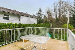 Photo 20: 4896 205A Street in Langley: Langley City House for sale : MLS®# R2257989