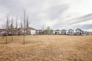 Photo 38: 259 CRANBERRY Place SE in Calgary: Cranston Detached for sale : MLS®# C4214402