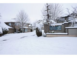 "Photo 18: 12 11737 236 Street in Maple Ridge: Cottonwood MR Townhouse for sale in ""MAPLEWOOD CREEK"" : MLS®# R2340245"