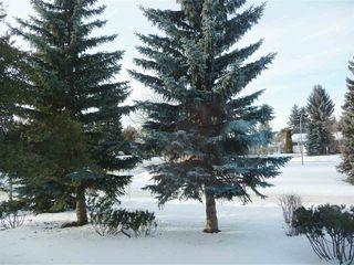 Photo 26: 8339 120 Street in Edmonton: Zone 15 House for sale : MLS®# E4146517