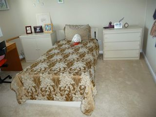 Photo 20: 8339 120 Street in Edmonton: Zone 15 House for sale : MLS®# E4146517