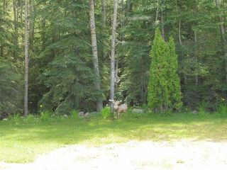 Photo 12: 433 53303   RGE RD 31: Rural Parkland County Rural Land/Vacant Lot for sale : MLS®# E4151667