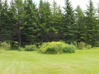 Photo 11: 433 53303   RGE RD 31: Rural Parkland County Rural Land/Vacant Lot for sale : MLS®# E4151667