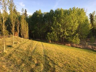 Photo 14: 433 53303   RGE RD 31: Rural Parkland County Rural Land/Vacant Lot for sale : MLS®# E4151667