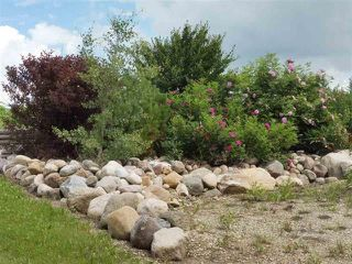 Photo 4: 433 53303   RGE RD 31: Rural Parkland County Rural Land/Vacant Lot for sale : MLS®# E4151667