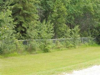 Photo 8: 433 53303   RGE RD 31: Rural Parkland County Rural Land/Vacant Lot for sale : MLS®# E4151667