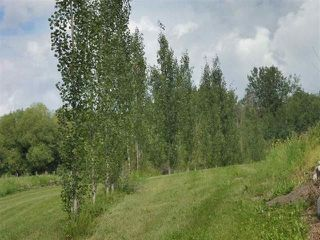 Photo 27: 433 53303   RGE RD 31: Rural Parkland County Rural Land/Vacant Lot for sale : MLS®# E4151667