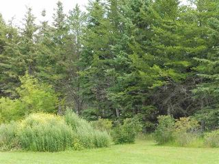 Photo 10: 433 53303   RGE RD 31: Rural Parkland County Rural Land/Vacant Lot for sale : MLS®# E4151667