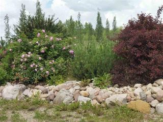Photo 6: 433 53303   RGE RD 31: Rural Parkland County Rural Land/Vacant Lot for sale : MLS®# E4151667