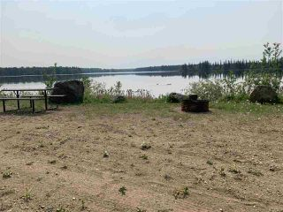 Photo 21: 10081 Croswell Road: Rural Lesser Slave River M.D. Business with Property for sale : MLS®# E4151780