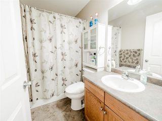Photo 18: 3440 19 Street in Edmonton: Zone 30 House for sale : MLS®# E4152818