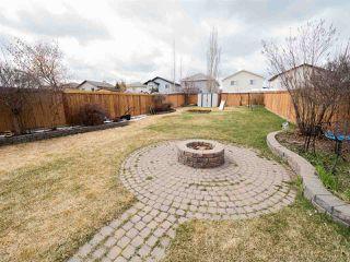 Photo 29: 3440 19 Street in Edmonton: Zone 30 House for sale : MLS®# E4152818