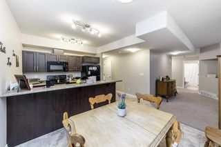 Photo 39: 33 Lacombe Drive: St. Albert House for sale : MLS®# E4210141
