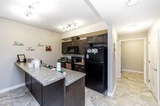 Photo 40: 33 Lacombe Drive: St. Albert House for sale : MLS®# E4210141