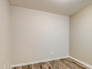 Photo 16: 112 1717 60 Street SE in Calgary: Red Carpet Apartment for sale : MLS®# A1050872