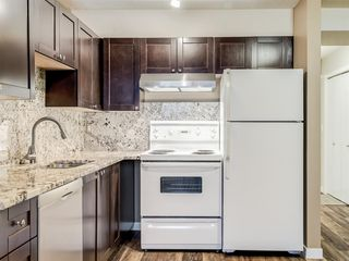 Photo 5: 112 1717 60 Street SE in Calgary: Red Carpet Apartment for sale : MLS®# A1050872