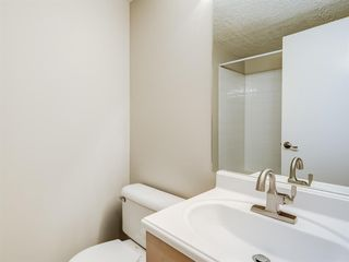 Photo 17: 112 1717 60 Street SE in Calgary: Red Carpet Apartment for sale : MLS®# A1050872