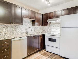 Photo 3: 112 1717 60 Street SE in Calgary: Red Carpet Apartment for sale : MLS®# A1050872
