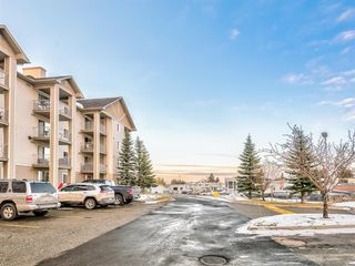 Photo 24: 112 1717 60 Street SE in Calgary: Red Carpet Apartment for sale : MLS®# A1050872