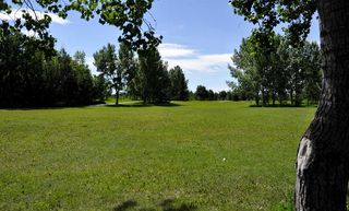 Photo 30: 3620 58 Avenue SW in Calgary: Lakeview Detached for sale : MLS®# A1053407